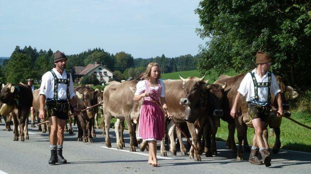 Viehscheid-Maierhöfen nice dirndl going barfoot