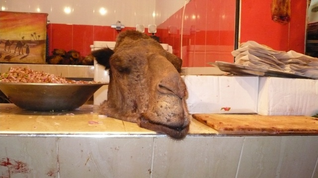 camel head in a moroccan butcher stall