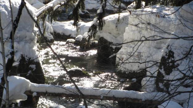 alpine skiing in the bregenzer wald frozen river