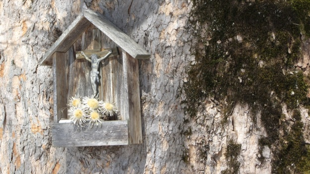 ski touring in the bregenzer wald - old tree with jesus