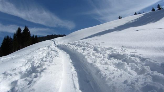 ski touring in the bregenzer wald - track