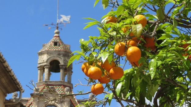 best of mallorca - orange tree with clocktower