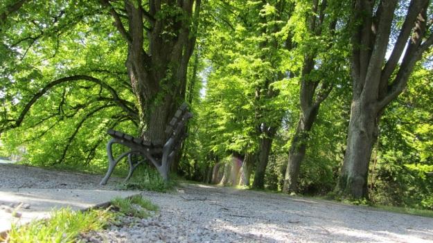 lindau bad schachen stroll - lindenhof park allee