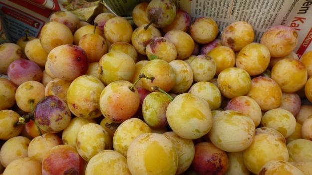 Sunday cake - Marillenkuchen mit Schlagsahne - the picked yellow plums