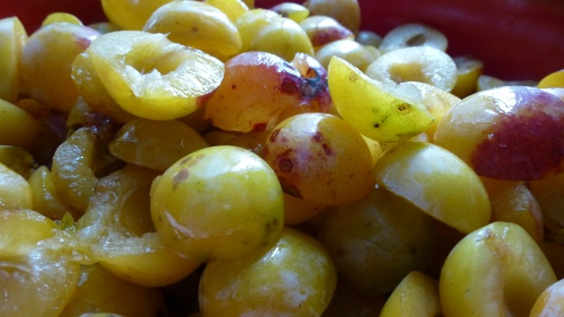 Sunday cake - Marillenkuchen mit Schlagsahne - the picked yellow plums without the seed