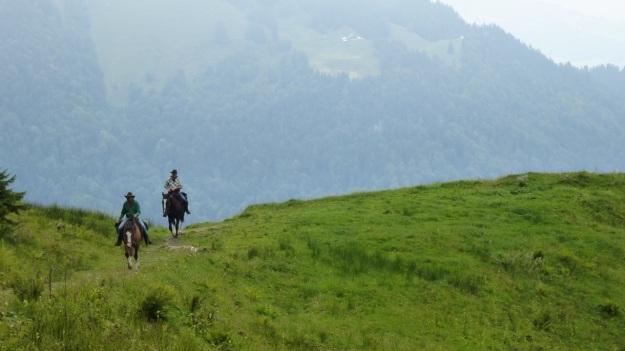 hiking to the mörzelspitze in austria vorarlberg07 western horses