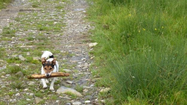 hiking to the mörzelspitze in austria vorarlberg10 paul with a stick