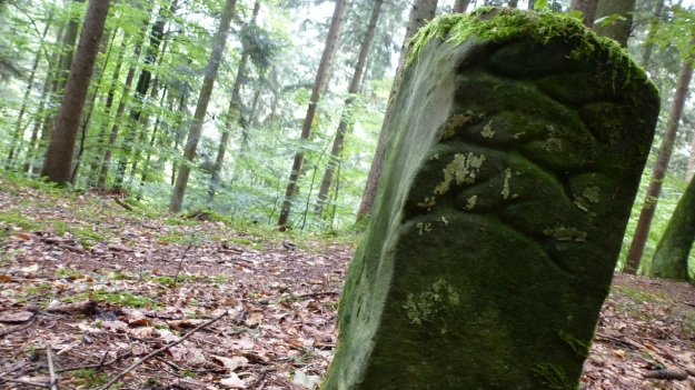 old territory stone in the forrest