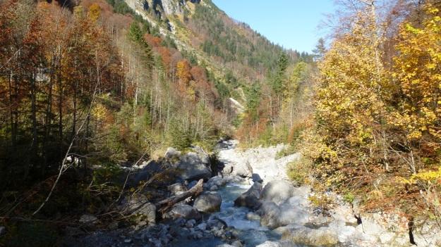 Biberacher Hütte - Schröcken hiking river view autumn leaves