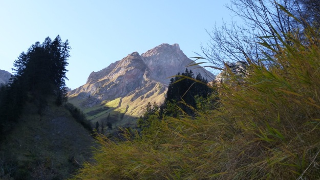 Biberacher Hütte - Schröcken hiking autumn grass and mountain