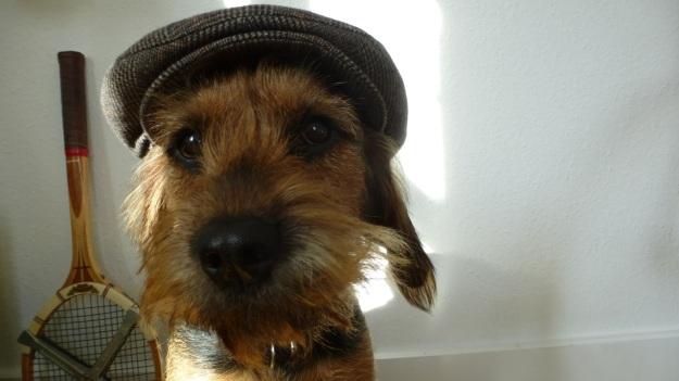 Wigens cap hat created in sweden since 1906