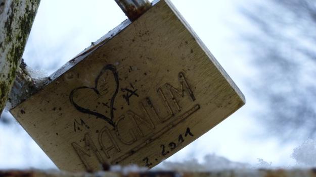 A snowday walk 3