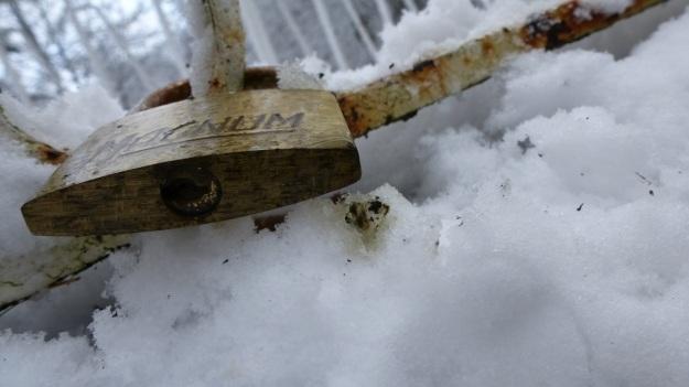 A snowday walk 4