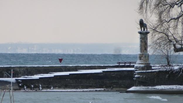 A snowday walk 6
