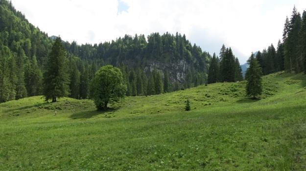 Hiking Sibratsgfäll Austria Alm Sennerei02
