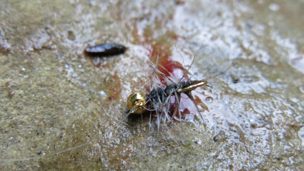 Fly fishing - Feinschmuck 14