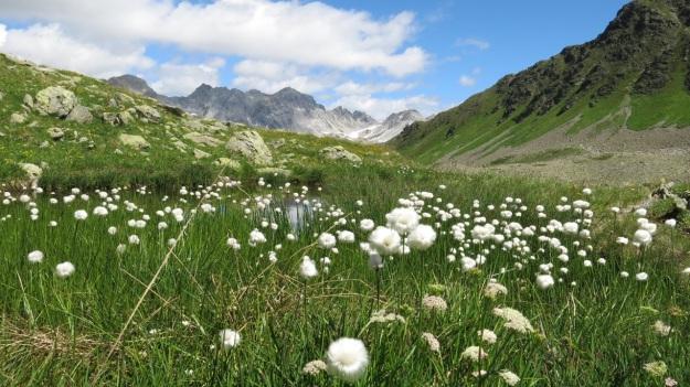 Kaltenberghütte Verwall Hiking02