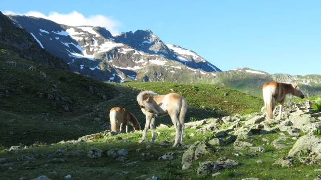 Kaltenberghütte Verwall Hiking08