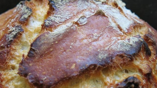 Bread Porn 520
