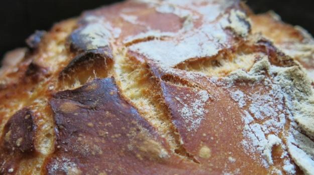 Bread Porn 521