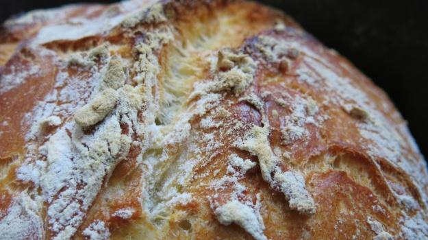 Bread Porn 522
