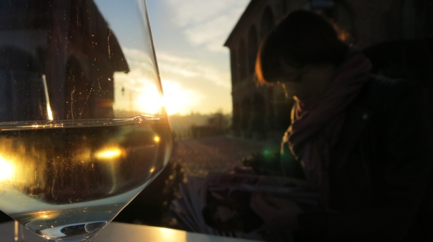 Piemont Italy 2013 917